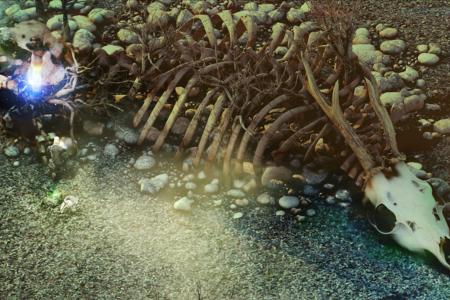 Esqueleto de un extraño animal de gran tamaño